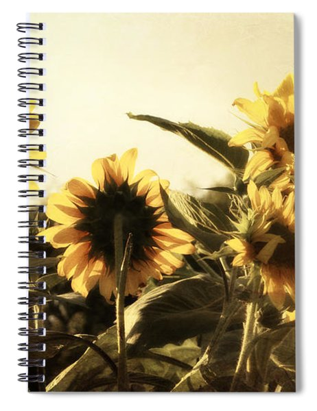 Sunflowers In Tone Spiral Notebook