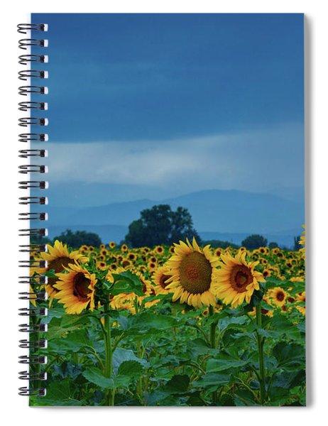 Sunflowers Under A Stormy Sky Spiral Notebook