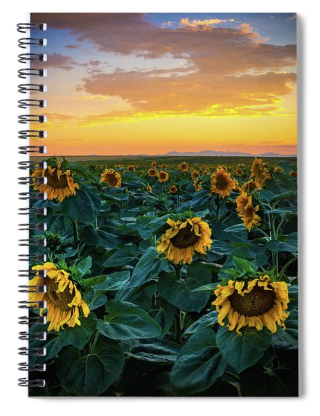 Spiral Notebook featuring the photograph Sunflowers Under A Sunset Sky by John De Bord