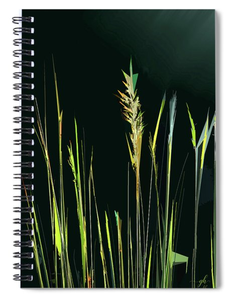 Spiral Notebook featuring the digital art Sunlit Grasses by Gina Harrison