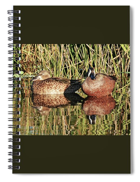 Sunny Afternoon Snooze Spiral Notebook
