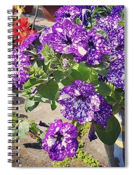 Sunny Garden Pots Spiral Notebook