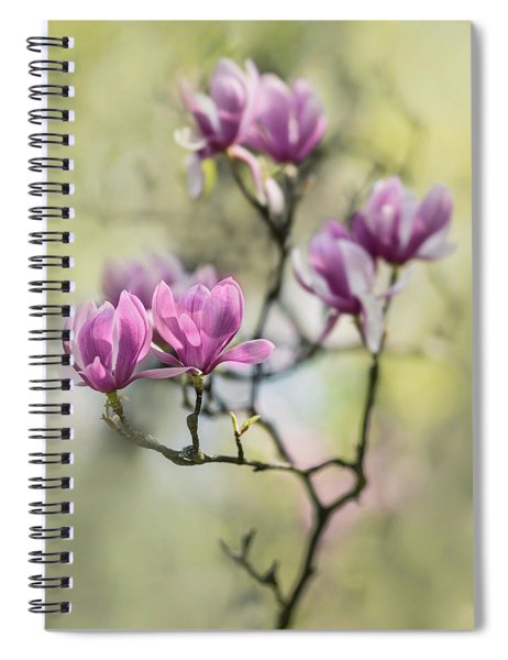 Sunny Impression With Pink Magnolias Spiral Notebook