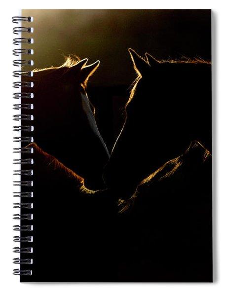 Sunrise Companions Spiral Notebook