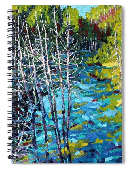 Sunrise Swamp Spiral Notebook