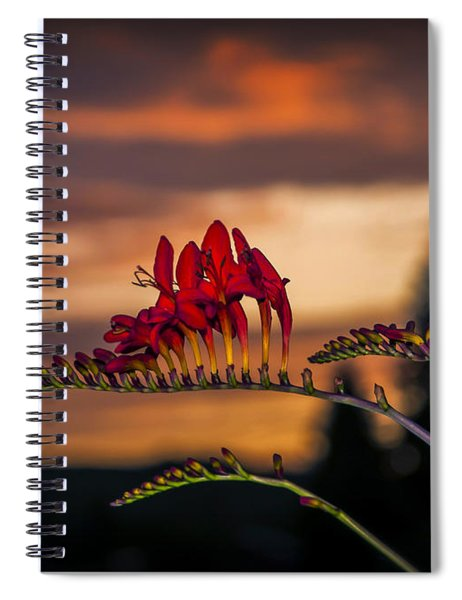 Sunset Crocosmia Spiral Notebook