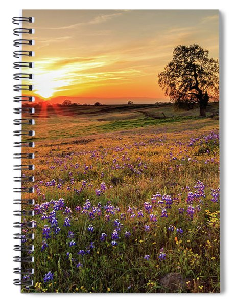 Sunset On North Table Mountain Spiral Notebook