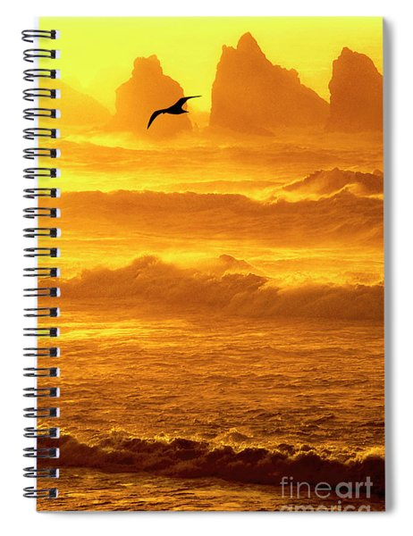 Sunset Sea Stacks Sea Gull Bandon Oregon Spiral Notebook