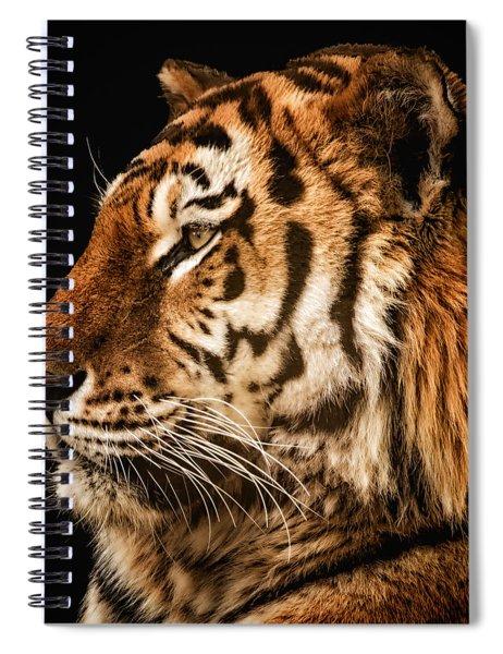Sunset Tiger Spiral Notebook