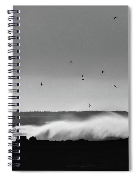 Surf Birds Spiral Notebook
