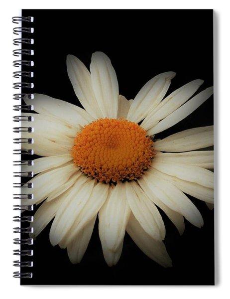 Surreal Shasta Spiral Notebook