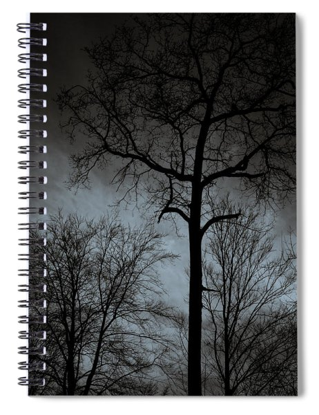 Surrounded Spiral Notebook