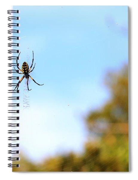 Suspended Spider Spiral Notebook