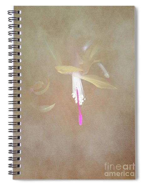 Swaddled Blossom Spiral Notebook
