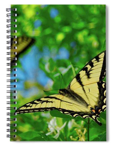 Swallowtails Spiral Notebook
