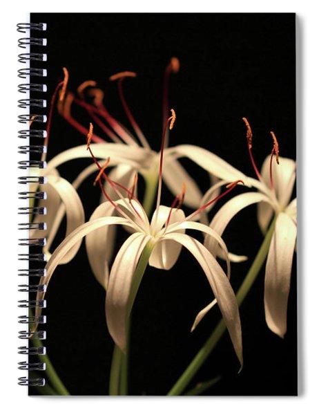 Swamp Lily Spiral Notebook