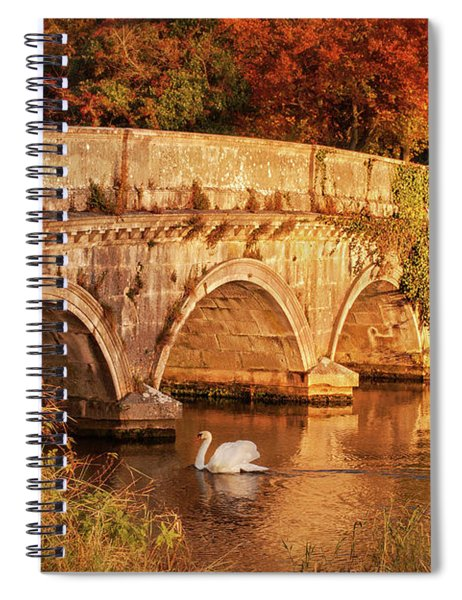 Swan On The Rye Water - Kildare, Ireland Spiral Notebook by Barry O Carroll