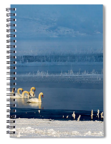 Swans On The Lake Spiral Notebook