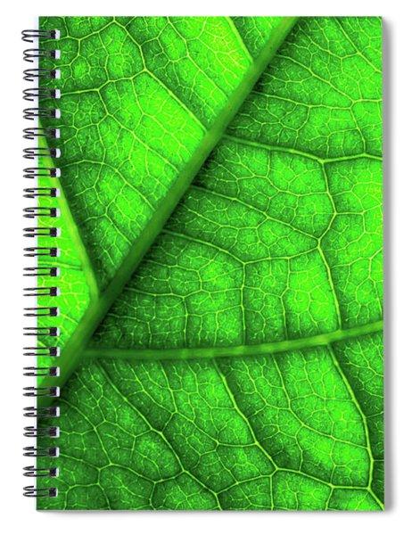 Sweet Green Leaf Spiral Notebook