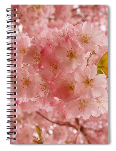 Sweet Pink- Holmdel Park Spiral Notebook