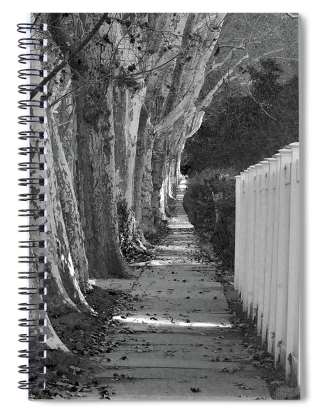 Sycamore Walk-grayscale Version Spiral Notebook