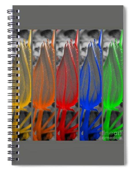 Take Five  Spiral Notebook