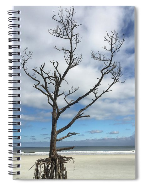 Talbot Stilt Tree #1 Spiral Notebook