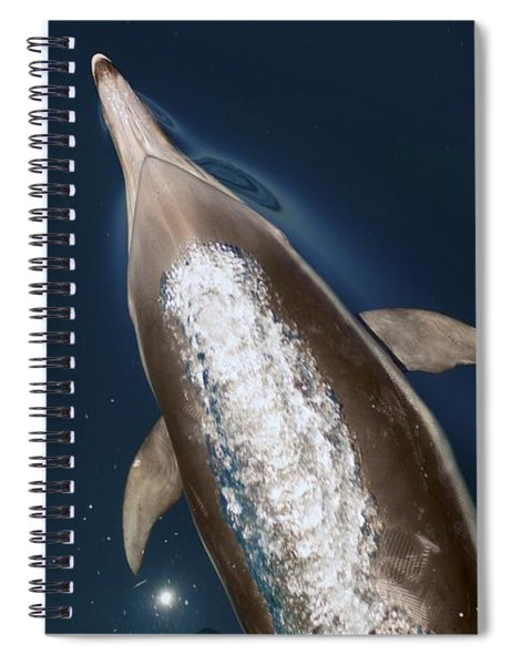 talking Back Spiral Notebook