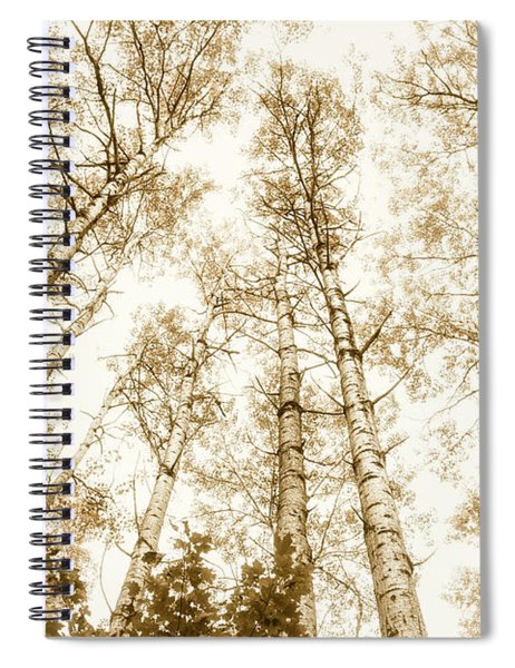 Tall Aspens Spiral Notebook