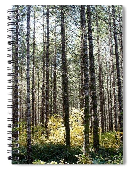 Tall Trees Spiral Notebook