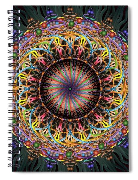 Tambourine Spiral Notebook