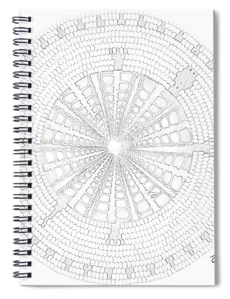Tan Shell Turtle Spiral Notebook