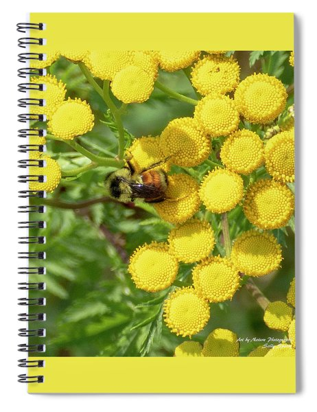 Tangle Of Tansy Spiral Notebook