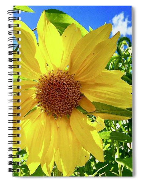 Tangled Sunflower Spiral Notebook