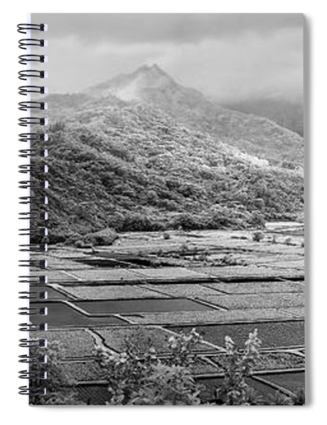 Taro  Terrain Spiral Notebook