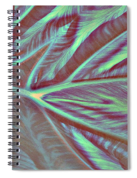 Spiral Notebook featuring the digital art Taro Valley 447 by Brian Gryphon