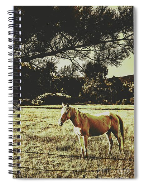 Tasmanian Rural Farm Horse Spiral Notebook