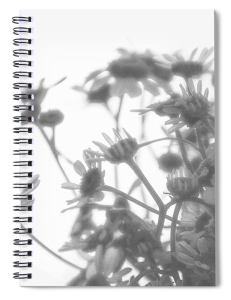 Tea Dream Spiral Notebook