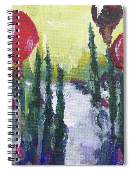 Temecula Balloons Spiral Notebook
