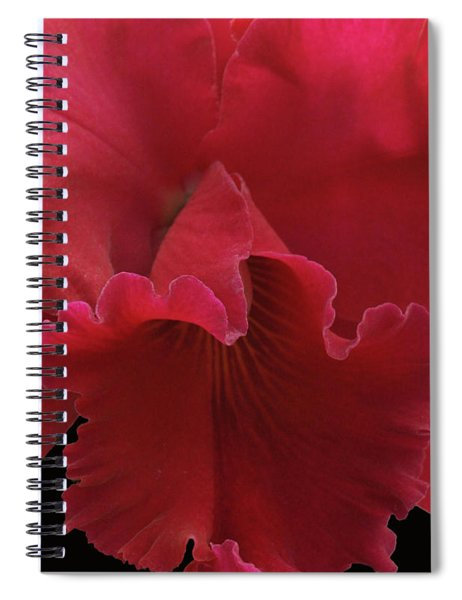 Tender Orchid Spiral Notebook