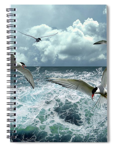 Terns In The Surf Spiral Notebook