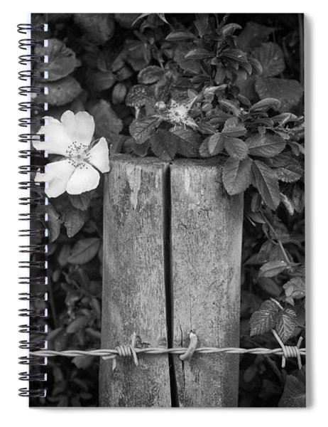 The Allotment Project - Dog Rose Spiral Notebook