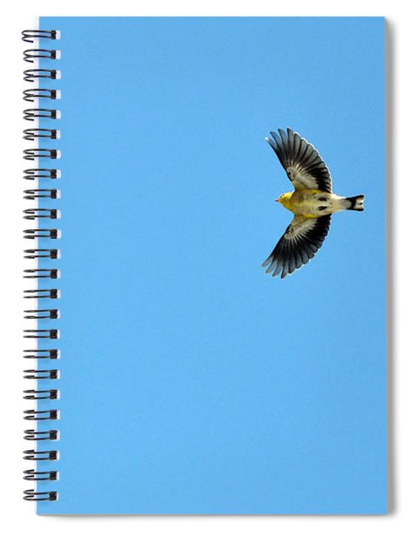 The American Goldfinch In-flight Spiral Notebook