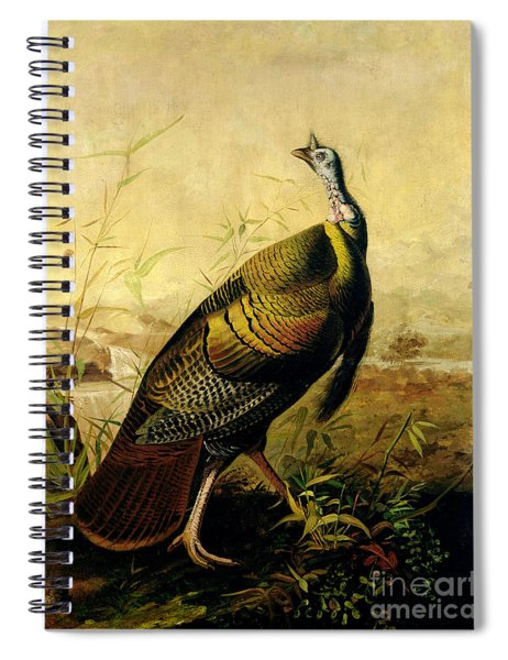 The American Wild Turkey Cock Spiral Notebook