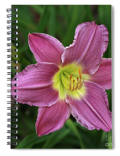 The Beckoning Spiral Notebook