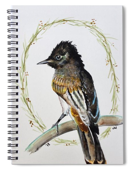 The Black Phoebe  Spiral Notebook