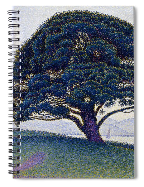 The Bonaventure Pine  Spiral Notebook