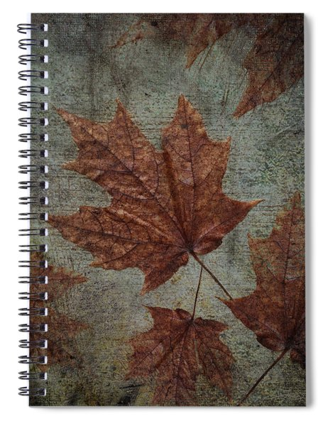The Bronzing Spiral Notebook