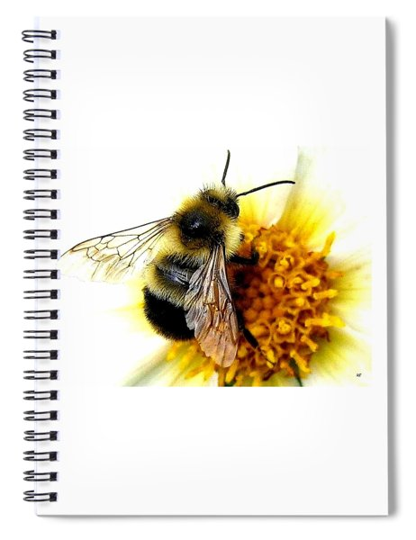 The Buzz Spiral Notebook