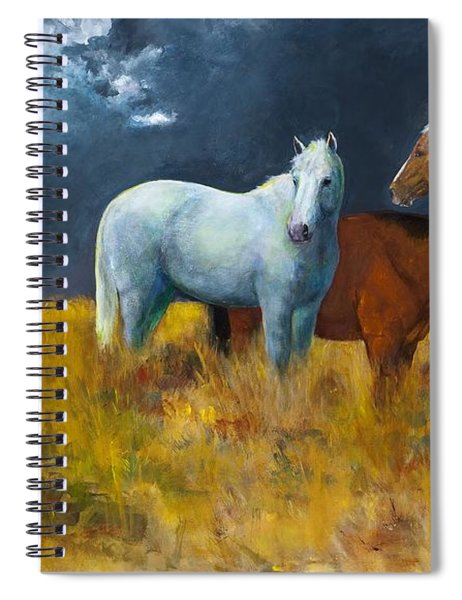 The Calm After The Storm Spiral Notebook